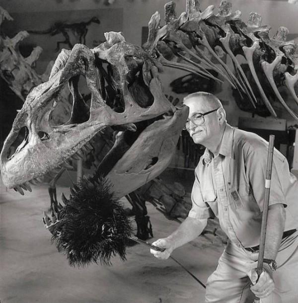 Специалист по стиранию пыли с динозавров.