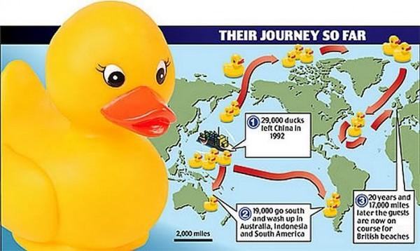 rubber-ducks-go-whitewater-map