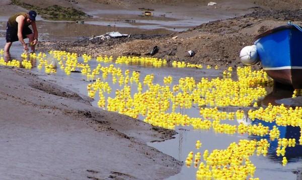rubber-ducks-go-whitewater6