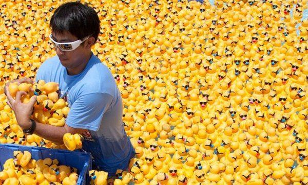 rubber-ducks-go-whitewater8