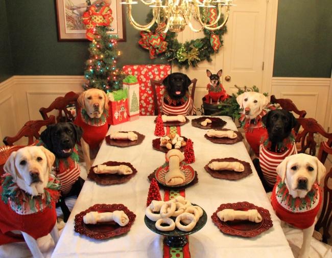 Рождество для всех