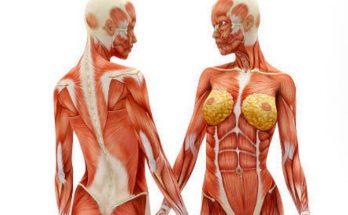 Как снять спазм мышц? Причины, симптомы и методы устранения