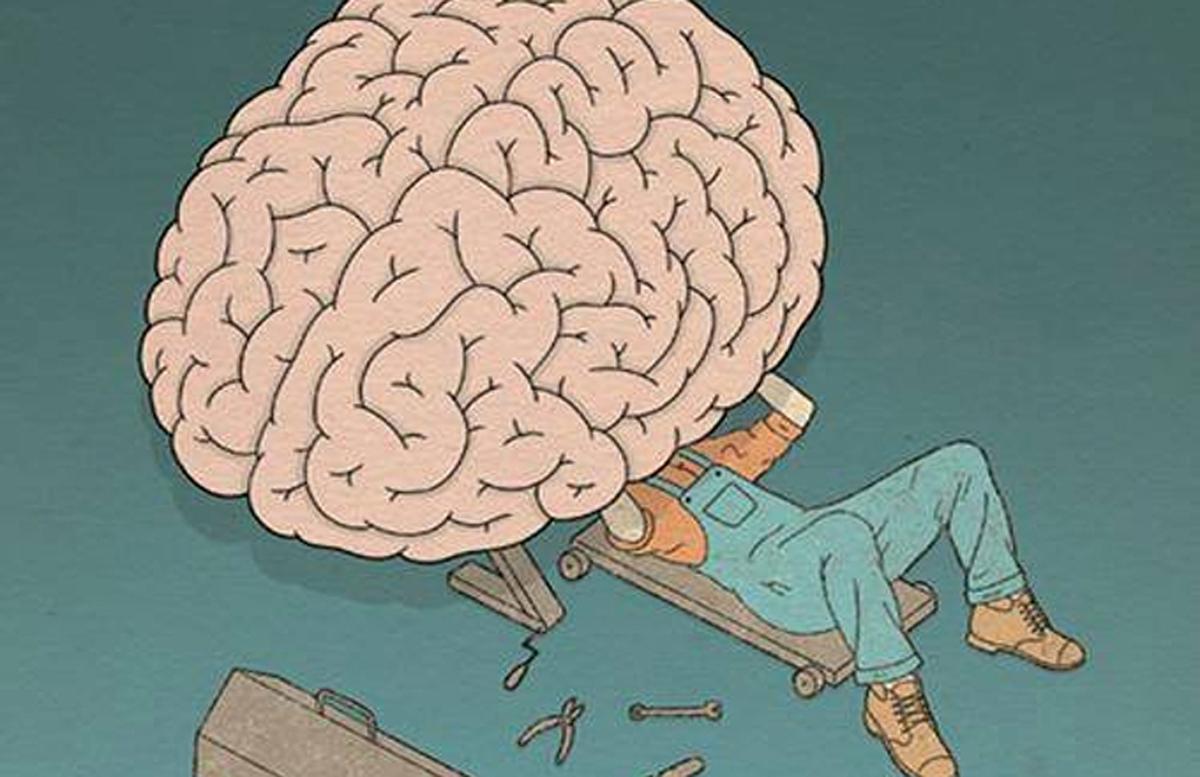Прикольные картинки мой мозг